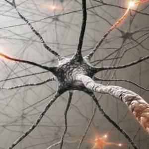 ابزار تشخیص نورولوژی
