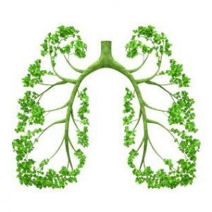 تصفیه هوا و اکسیژن ساز