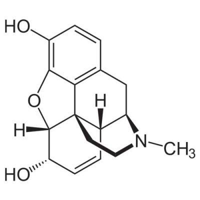 morphine-1-400x400 مرفین چقدر در بدن باقی می ماند